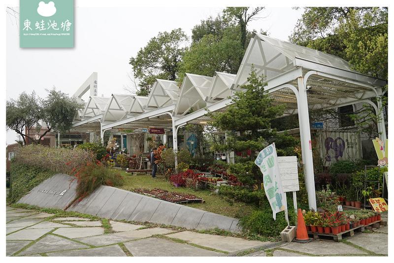 【桃園大溪慈湖免費景點】第一家以堅果為主題的展售館 還有滿滿的多肉植物和漢服租借棚拍服務 龍情魔幻豆子主題館