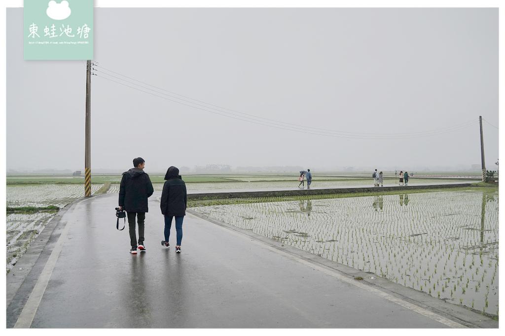 【宜蘭冬山網美景點推薦】宜蘭版伯朗大道 S型蜿蜒田間小路 宜蘭三奇美徑(冬山伯朗大道)
