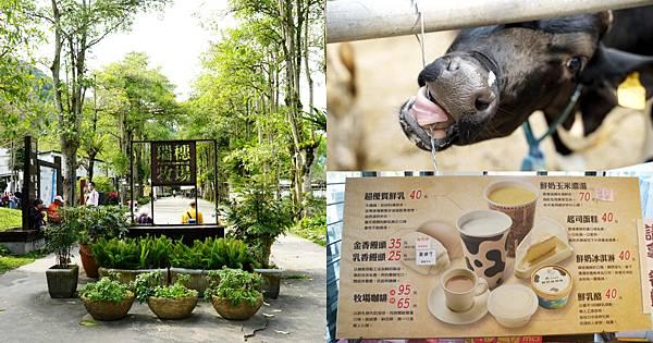 【花蓮瑞穗免費景點推薦】瑞穗下午茶好選擇 可愛乳牛/鴕鳥開放牧場 瑞穗牧場