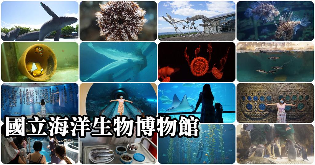 【屏東必訪親子景點推薦】海洋生物主題大型博物館 國立海洋生物博物館-海生館