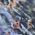 大地觀物26 2012 38x54--悠游