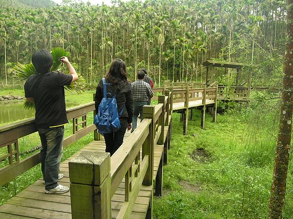 20100430東山自然休閒步道首次勘查 (6).JPG