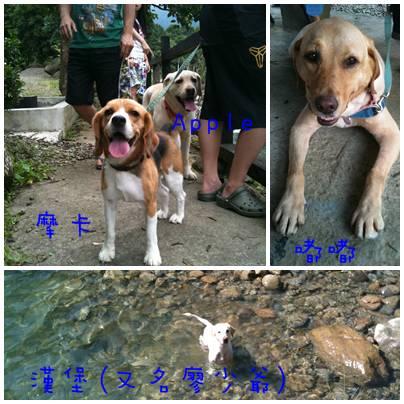 2011-07-02 馭閒陶苑露營-13-B.jpg