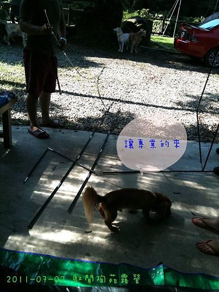 2011-07-02 馭閒陶苑露營-15.jpg