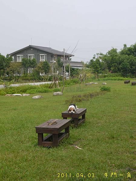 2011.09.04 牛鬥一角-26.jpg