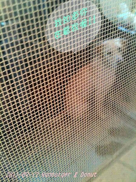 2011-09-17 那一年我們一起扁過的狗-6.jpg