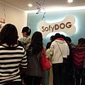 2012.03.04 Sofydog go shopping-2