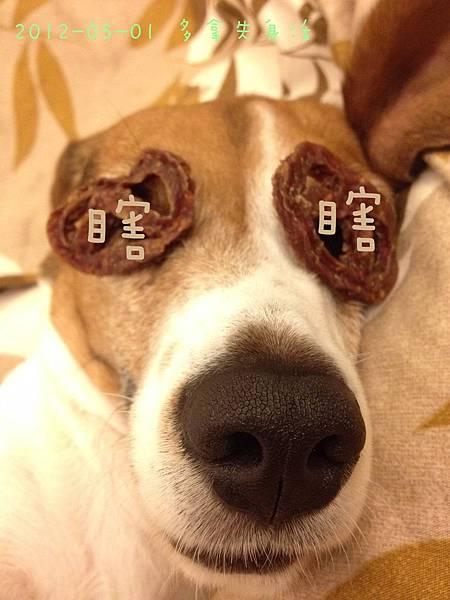 Donut House 小麻斗-10