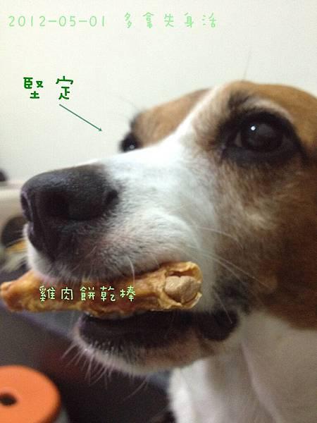 Donut House 小麻斗(雞肉餅乾棒)-26