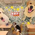 2012-10 板橋樂雅夫-07
