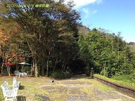 2012.12.16-三峽216 咖啡莊園-17