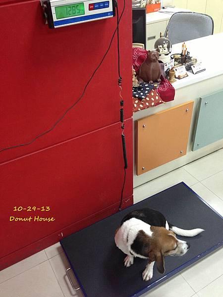 2013.10.29-年度血檢-02