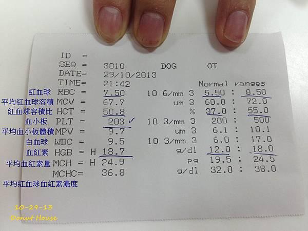 2013.10.29-年度血檢-04