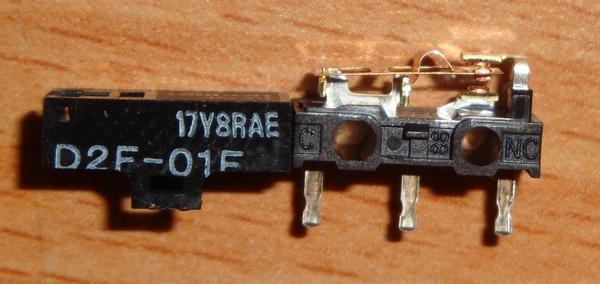 DSC04992.jpg