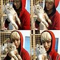 20120201_daehyun_cat
