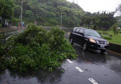 颱風圖片2.jpg
