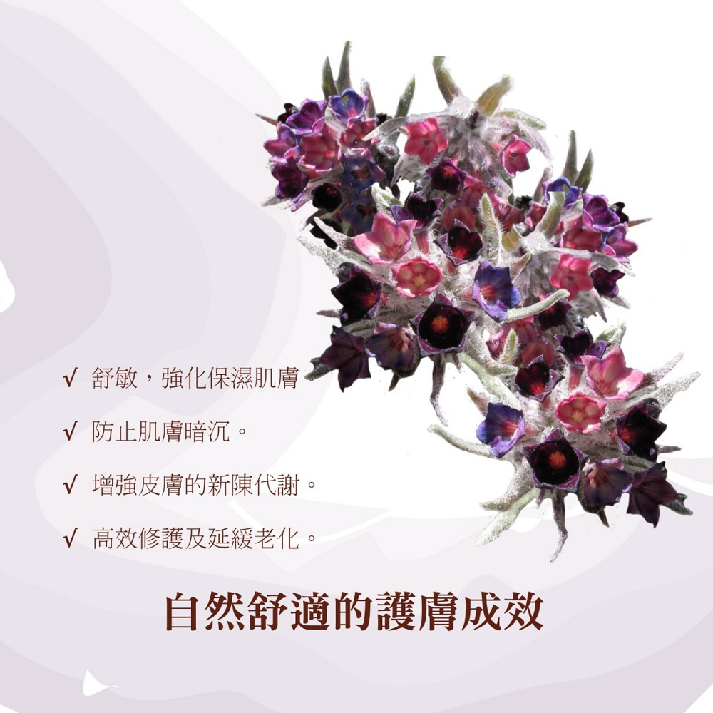 011688296_file_45276.jpg