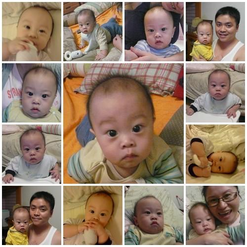 小寶第八個月