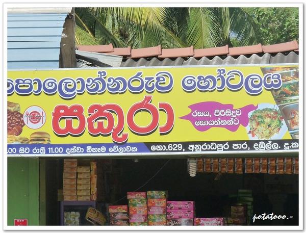 斯里蘭卡2.jpg