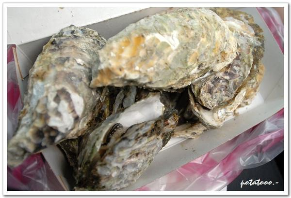 宜蘭牡蠣3.jpg