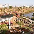 中都濕地公園-11