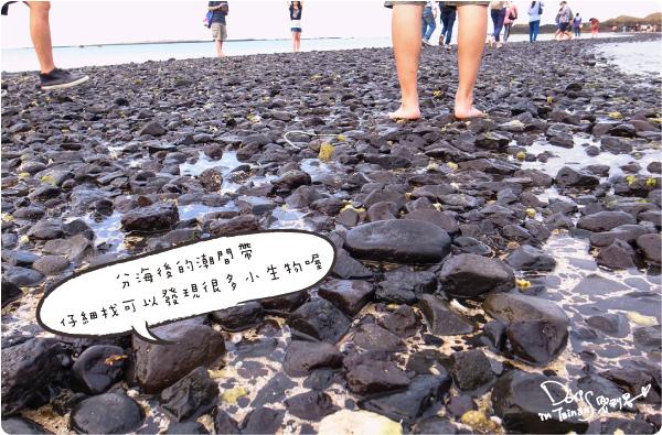 澎湖DAY1-23.JPG
