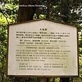 是台灣檜木做的