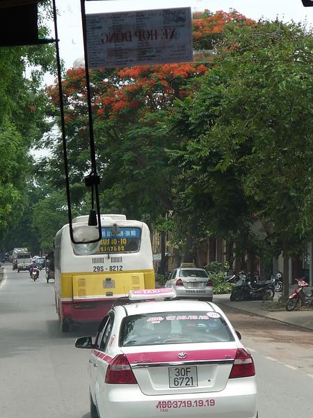 公車跟可愛的計程車(這邊不是小黃唷~是有各種顏色的)