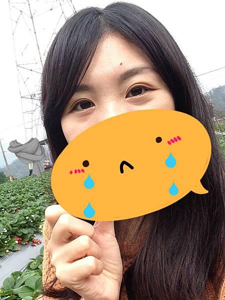 IMG_9606_meitu_2.jpg