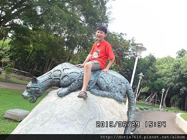 SAM_0455.JPG