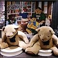 大熊可供拍照