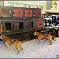 2014/3/21 Open North American Championship Sled Dog Race