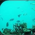 海底十公尺