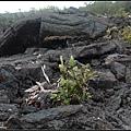 火山融岩地形