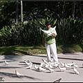 海灘邊的bird whisperer