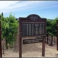 每一行的葡萄樹品種