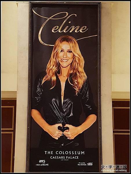 Céline Dion的表演居然取消了
