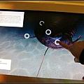 觸碰式螢幕互動解說好有趣:D