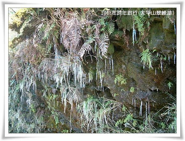 冷得樹梢草末都結冰了