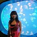 燈光變化有各色水母