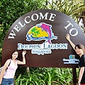 搭車前往海豚樂園