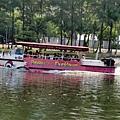 水陸兩用的鴨子船