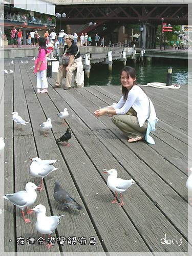 33水族館前的達令港灣