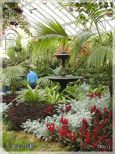 溫室花園-1