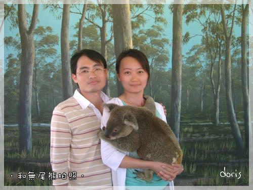 和無尾熊合照