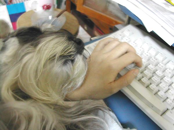 像是枕在她的小手上陪她上網