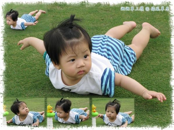 我是隻小小鳥之湘湘草上飛