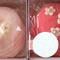 馬卡龍皂-日本櫻花風
