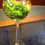 杯中魚5.jpg