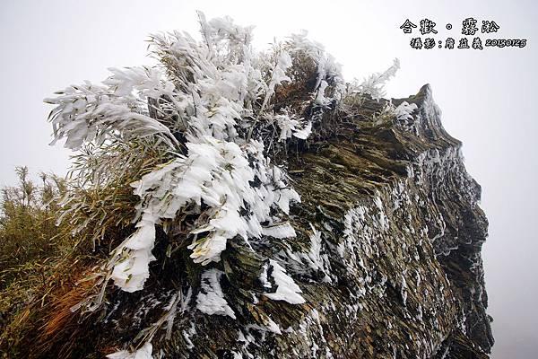 20130125合歡山霧淞